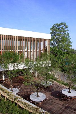 女子 大学 白百合 仙台 図書館|仙台白百合女子大学